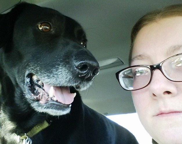 Loki seat belt